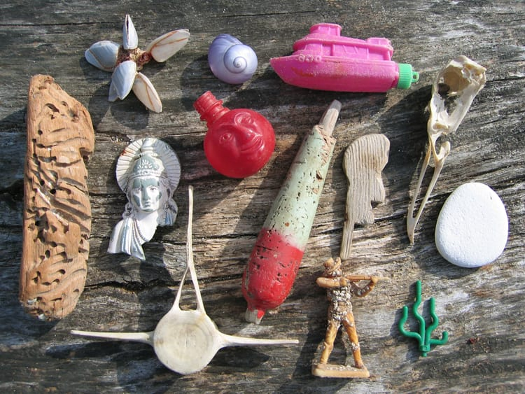 beach finds 2 small